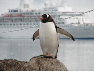 Antarcticai1