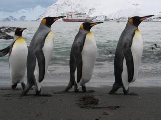 Antarcticaiipart32